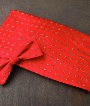 Red Pattern Cummerbund & Bow Tie