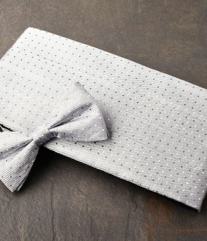 Silver Dot Pattern Cummerbund & Bow Tie Set
